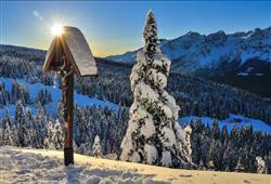 Hotely Paganella - různé *** hotely - 5denní lyžařský balíček se skipasem a dopravou v ceně***61