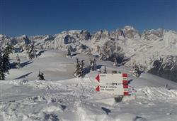 Residence Alpenrose***17