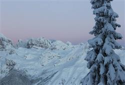 Residence Alpenrose***21