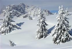 Residence Alpenrose***28