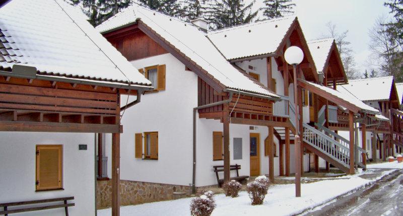 Vily Terme Zreče - zimní zájezd se skipasem v ceně****