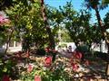 3. Villa Dusko