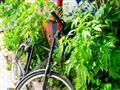 Kodaň je městem cyklistů ale i Svobodného státu Christiania