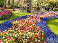 Zahrady jsou otevřeny od konce března do půlky května. Nejlepším měsícem k návštěvě je duben