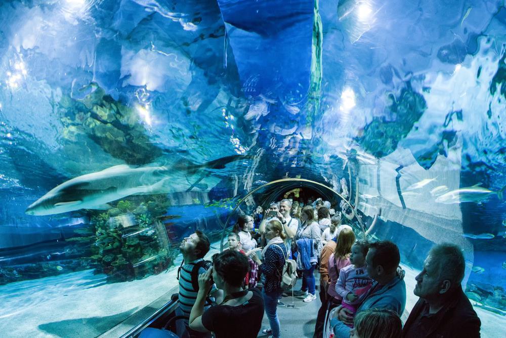 Tropicarium, největšího akvárium ve střední Evropě