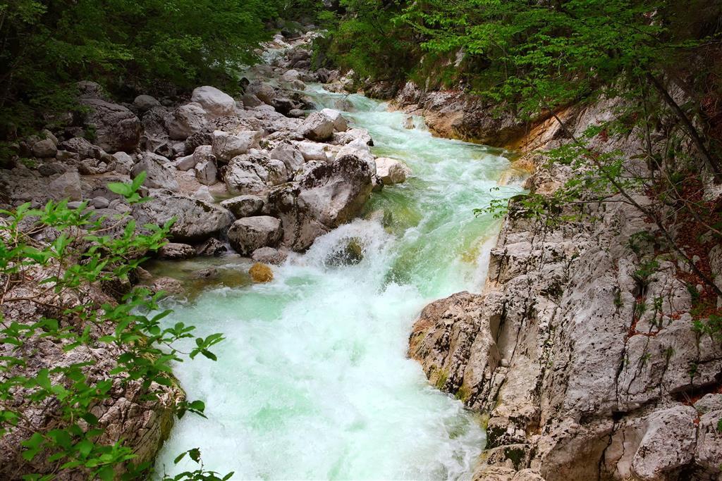 Zájemci se mohou s průvodcem vydat k fotogenickým vodopádům Savica, které Bohinjské jezero napájejí