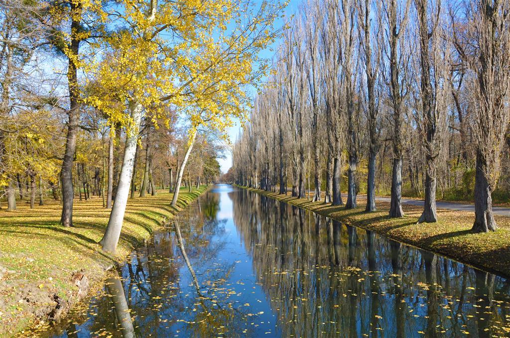 Zámecký park o rozloze 280 ha je vybudován ve stylu anglické zahrady. Všechny vodní plochy byly vykopány ručně