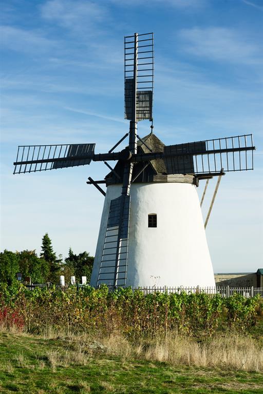 Na kopci nad městečkem můžete navštívit větrný mlýn, který je zcela funkční