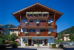 Hotel Villa Lucin***1