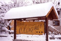 Hotel Olisamir***10