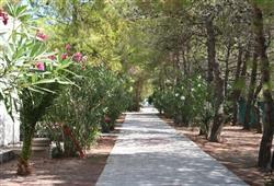Villaggio Sabbiadoro13