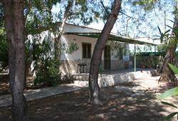 Villaggio Sabbiadoro2