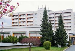 Hotel Radin****2