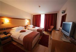 Hotel Lovec Bled****9
