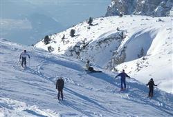 Hotely Paganella - různé *** hotely - 5denní lyžařský balíček se skipasem a dopravou v ceně***45