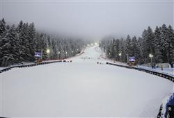 Hotely Paganella - různé *** hotely - 5denní lyžařský balíček se skipasem a dopravou v ceně***59