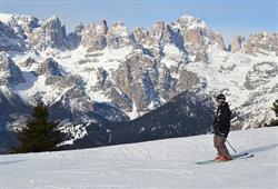 Hotely Paganella - různé *** hotely - 5denní lyžařský balíček se skipasem a dopravou v ceně***74