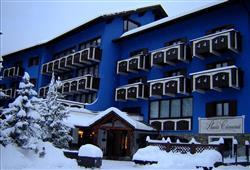 Hotel Baita Clementi****1