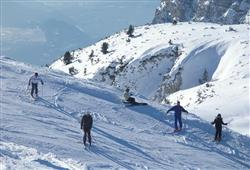 Hotel Corona Dolomites****29