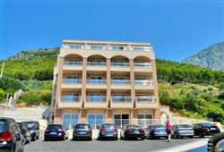 Hotel Drvenik Palace***3