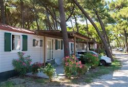 Villaggio Marina Village6