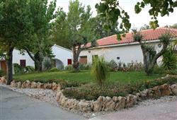 Villaggio Le Palme9