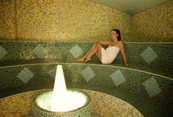 Hotel Park - Terme Dobrna****20