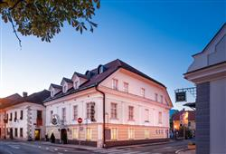 Hotel MD Kamnik0