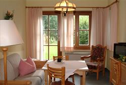 Apartamenty Rußbach4