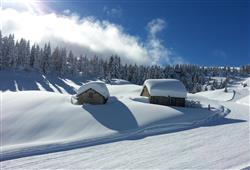 Hotel Erica - 5denní lyžařský balíček se skipasem a dopravou v ceně***16
