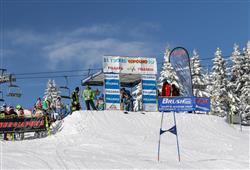 Hotel Erica - 5denní lyžařský balíček se skipasem a dopravou v ceně***18