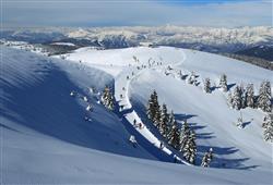 Hotel Erica - 5denní lyžařský balíček se skipasem a dopravou v ceně***19