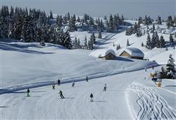 Hotel Erica - 5denní lyžařský balíček se skipasem a dopravou v ceně***10