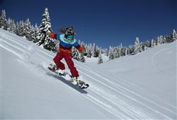 Hotel Erica - 5denní lyžařský balíček se skipasem a dopravou v ceně***30