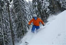 Hotel Erica - 5denní lyžařský balíček se skipasem a dopravou v ceně***31