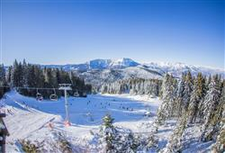 Hotel Erica - 5denní lyžařský balíček se skipasem a dopravou v ceně***35