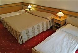 Hotel Cerkno***8