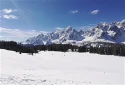 Hotel Comelico - 5denný lyžiarsky balíček so skipasom a dopravou v cene***21
