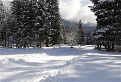 Hotel Comelico - 5denný lyžiarsky balíček so skipasom a dopravou v cene***20