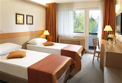 Hotel Savica – gourmet a wellness pobyt so skipasom do 3 krajín v cene***9