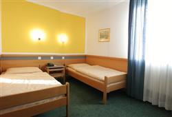 Hotel Alp***6