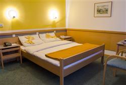 Hotel Alp***2