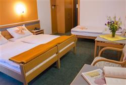 Hotel Alp***4