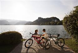 Hotel Park - Bled****25