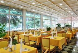 Hotel Svoboda****5