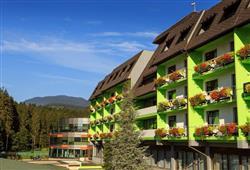 Hotel Vesna***1