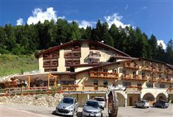 Hotel Chalet al Foss***1