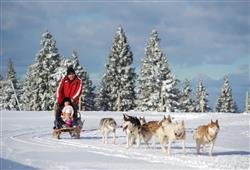 Hotel Brinje - zimní zájezd se skipasem v ceně***25