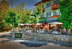Hotel Lovec Bled****14