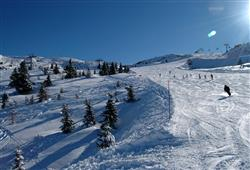Dlouhé a široké sjezdovky si zamilují i zkušení lyžaří
